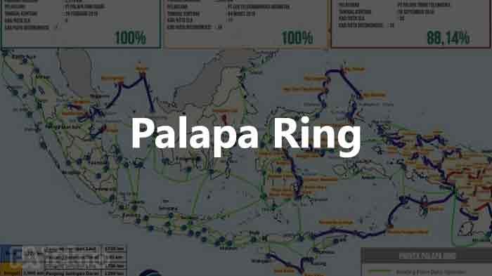 Infrastruktur telekomunikasi palapa ring